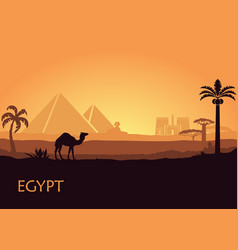 camel in wild africa pyramids landscape background vector image