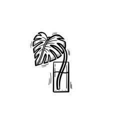 palm sprout in a glass of water sketch icon vector image