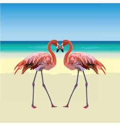 Two flamingo birds forming a shape of a heart vector image