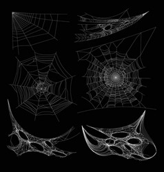 spiderweb or spider web cobweb on wall corner vector image