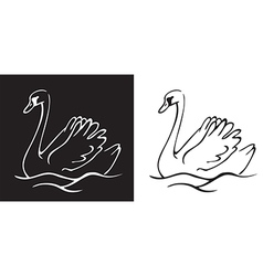 Bird Swan on a black and white background vector