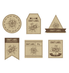 craft labels with black caraway vector image
