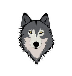 muzzle wolf vector image
