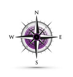 purple compass vector image