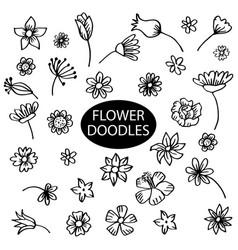 set flower doodles vector image