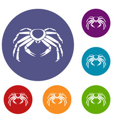 Snow crab icons set vector