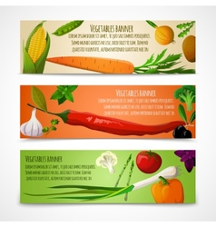 Vegetables horizontal banners vector image