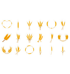 wheat icon set cartoon style vector image
