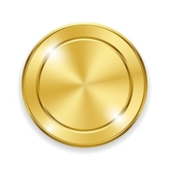 Blank round polished gold metal badge on white vector image