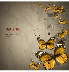 Colorful vintage background with butterfly Grunge vector image vector image