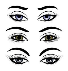 colorful female eyes and brows vector image vector image