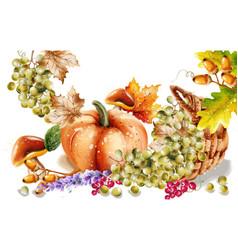 Autumn fall vegetables watercolor pumpkin vector