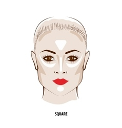 Contour and highlight makeup vector