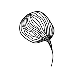 Cotton flower anstract line art contour drawing vector