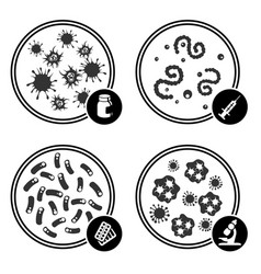 icons virus in petri dish vector image
