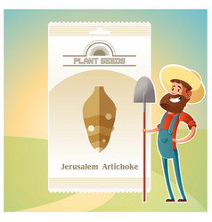 Pack jerusalem artichoke seeds icon vector
