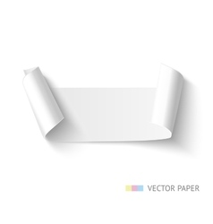 paper roll banner vector image