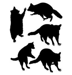 Raccoon animal silhouette vector