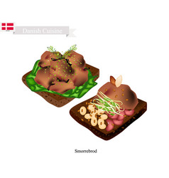 smorrebrod with roast meat the national dish of d vector image