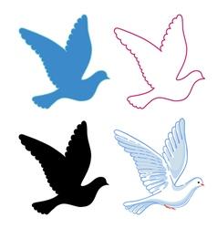 Soaring dove vector image