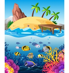 Fish swimming underwater and island vector image vector image