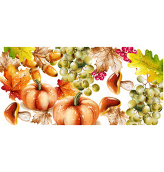 autumn fall vegetables watercolor pumpkin vector image