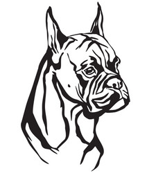 decorative portrait of dog boxer vector image