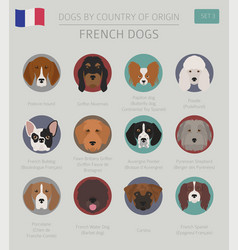 Dogs by country of origin french dog breeds vector