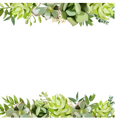 Floral design square card design with succulent vector