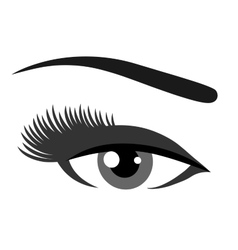 grey eye with eyelashes vector image
