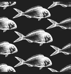 hand drawn fish seamless pattern dorado on chalk vector image