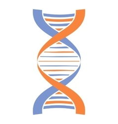 New DNA and molecule icon vector image