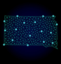 Polygonal 2d mesh map of south dakota state with vector