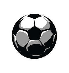 stylish soccer ball on a white background vector image