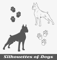 Silhouettes of purebred dogs vector image vector image