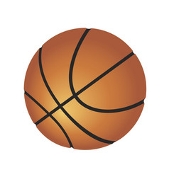 Ball for playing basketball vector