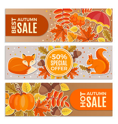 banners autumn sales autumn leaves squirrel vector image