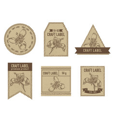 Craft labels with tigridia vector