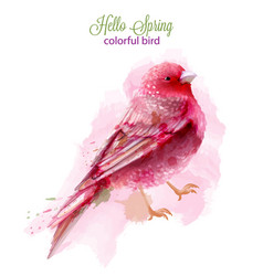 cute pink bird watercolor isolated on white vector image