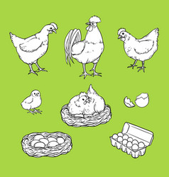Flat poutry farm chicken monochrome set vector
