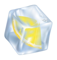 Ice cube with frozen slice of lemon closeup icon vector