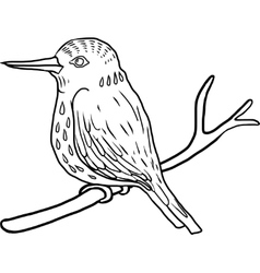 hand drawn bird vector image