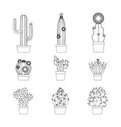 Cactus thin line icon set vector image