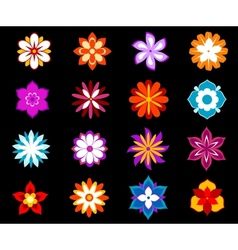 Set of colorful flowers and blossoms vector image