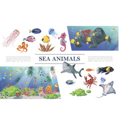 cartoon sea animals composition vector image