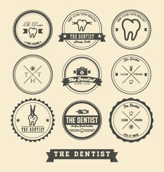 dentist label design vector image