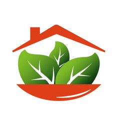diet house vector image