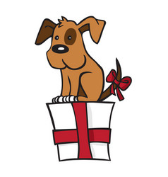 dog is on gift vector image