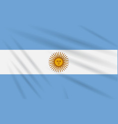 Flag argentina swaying in wind realistic vector