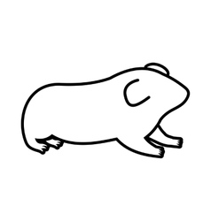 Hamster icon outline style vector
